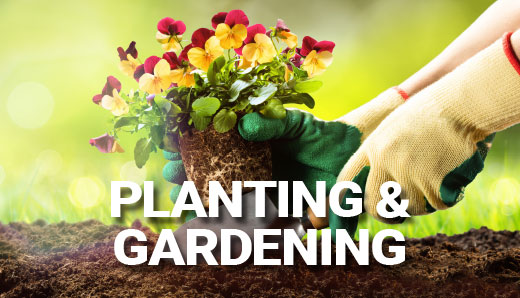 Planting and Gardening – Quest Brands